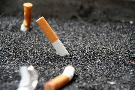 butted out cigarette photo