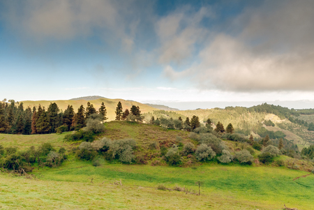 grand canary: A shot of the Pinos de Galdar in Grand Canary island Stock Photo