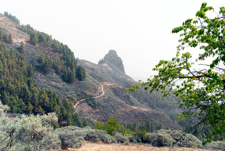 grand canary: A shot of the mountain known as Roque Grande (Big Rock) in Grand Canary
