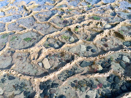 grand canary: A shot of a formation of puddles bathed by the tide in Las Canteras Beach (Grand Canary, Canary islands) Stock Photo