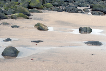 A shot of a set of small puddles in the sand on the shore of a beach