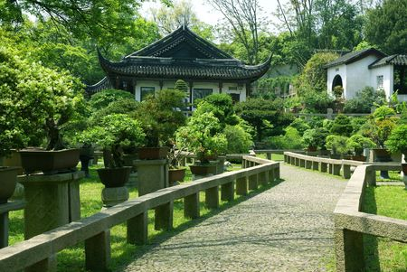 dwarfish: Bonsai trees at chinese traditional garden, Suzhou, China