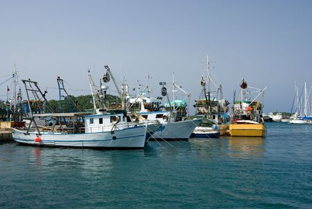 Fishing ships in the port of Vrsar, Istria, Croatia photo