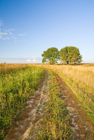 Autumn rural landscape with road and two trees Stock Photo - 4528260