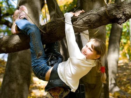 ni�o escalando: Ni�a colgando en el �rbol en un parque de oto�o