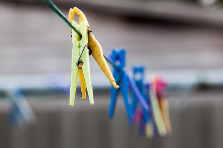 clothesline: dirty clothes pegs in various colors hanging on the clothesline