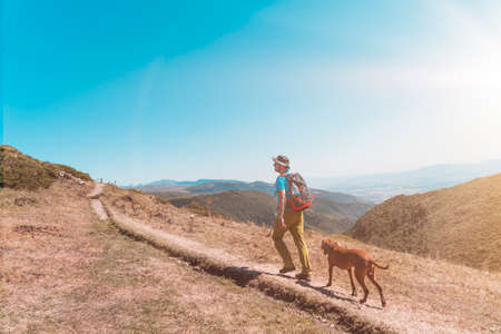 Man tourist with dog stands on top of a mountain.hikers adventure and the dog go walking