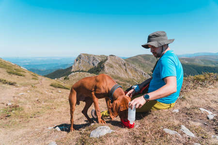 Hiker gives water to his dog when they rest in mountain