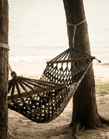 calmness vintage hammock on pine tree near the beach