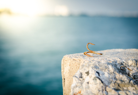 Rusty anchor hook on the rock Stock Photo