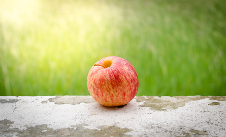 red apple with green grass background at morning time