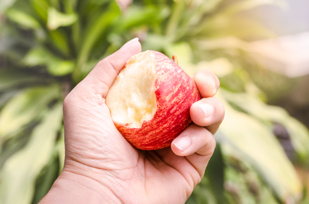 hand holding an red bitten apple in morning time
