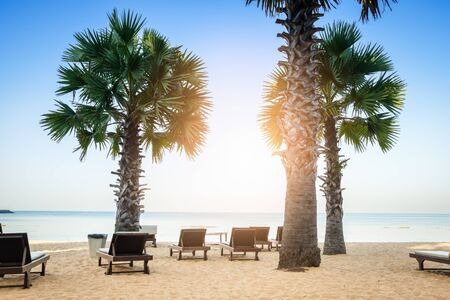 Palm trees and the sunbeds at  tropical beach.