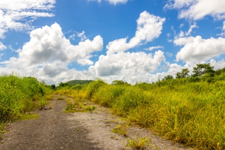 wasteful: the old road on wasteful land