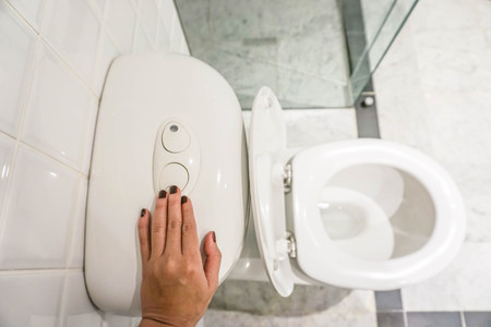 enviroment: save the enviroment by flush the toilet with human hand