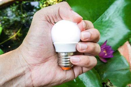 man hold bright round light bulb in nature backdrop