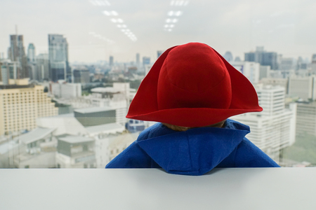 lonely concept - cute doll in blue sweater with red hat look outside at the window Foto de archivo