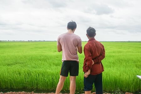 dad watching his son use Drone remote control in rice paddy Stock fotó