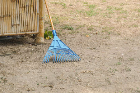 blue rake for dry leaves and litter in the home garden