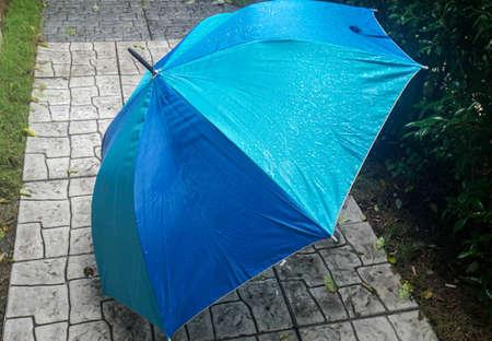 wet blue umbrella in rainy season at park