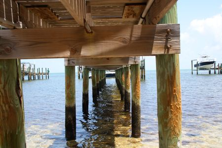 pilings: View from under the wooden pier