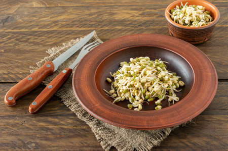 Germinated food. Sprouted beans in a plate on rustic wooden background. Macrobiotics.