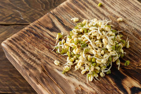 Germinated food. Sprouted beans in a plate on rustic wooden background. Macrobiotics