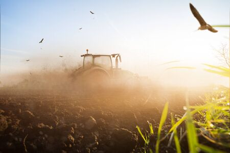 Tractor in a dry field 免版税图像