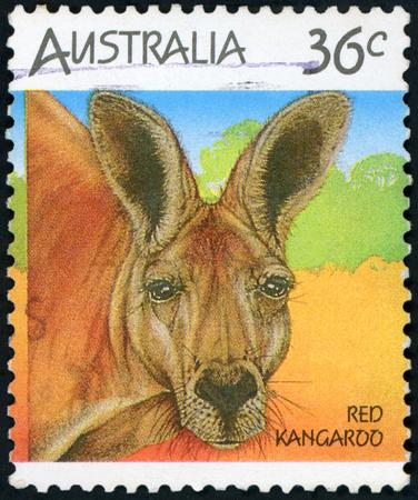 Postage stamp (Australia - Red kangaroo)