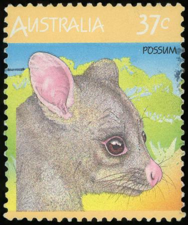 Postage stamp ( Australia - Possum ) Imagens