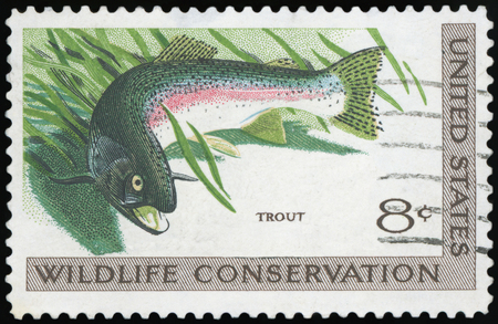 UNITED STATES OF AMERICA - CIRCA 1971: A stamp printed in USA dedicated to wildlife conservation, shows trout, circa 1971 Editorial
