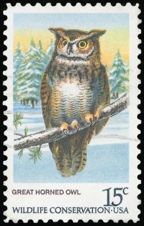 USA - CIRCA 1978: A stamp printed in United States of America shows Great Horned Owl, Wildlife Conservation issue, circa 1978