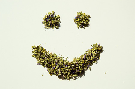 remedial: Happy smile of mallow herbal tea isolated closeup on white background Stock Photo
