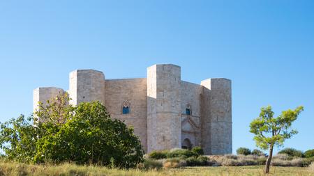 octagonal: Castel del Monte, en Puglia Italia - la arquitectura medieval octagonal en los viajes italiano Editorial