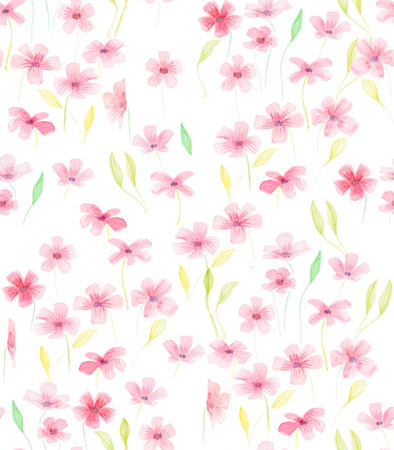 Hand painted with watercolor brush seamless pattern with red and rose geraniums illustration isolated on white background