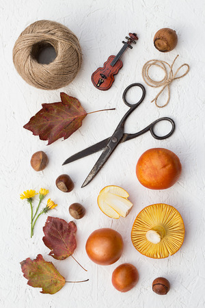 goodies: Fall Goodies