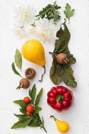 verduras verdes: Bodeg�n de ca�da