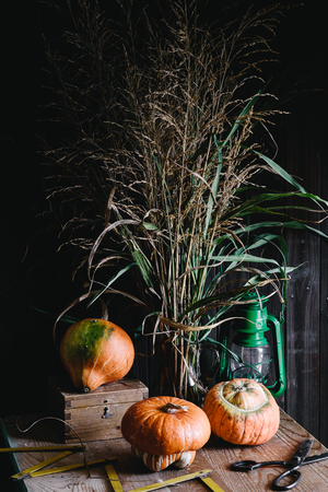 wooden metre: Three pumpkins, dried green field bouquet, and vintage tools. Rustic style, moody atmosphere