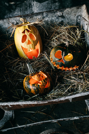 frightful: Halloween decorations - three carved pumpkins with candles in a barn. A vintage wheelbarrow is used as a stand.
