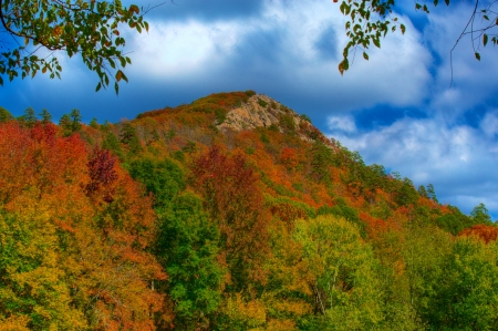 Pinnacle Mountain State Park in the Fall  Little Rock, Arkansas