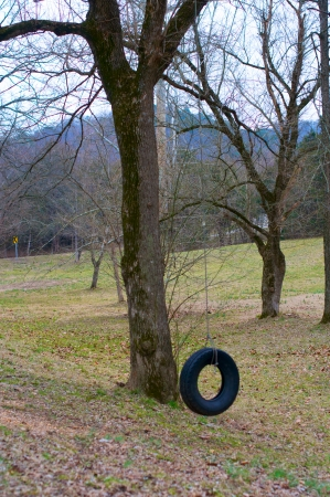 A tire swing in a country Park in winter.