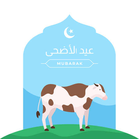 Happy Eid Al Adha islamic holiday the sacrifice of livestock animal poster design. Cow vector illustration with mosque door background. Arabic : Eid Al Adha