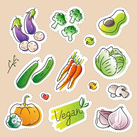 Collection of eco natural harvest products, illustrations in sketchy style of healthy eco natural vegetables, free hand vector drawing. Images of farming veggies, good for farming market, restaurant