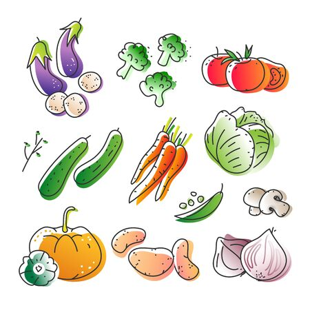 Collection of eco natural harvest products, illustrations in sketchy style of healthy eco natural vegetables, free hand vector drawing. Images of farming veggies, good for farming market, restaurant Stok Fotoğraf - 129482286