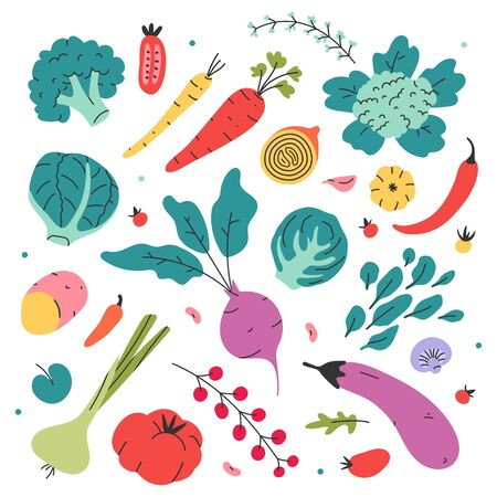 Vegetables collection. Potato, cabbage, carrot, pepper, chili, beet, tomato and eggplant. Hand drawn flat doodle colored vector illustrations. Healthy diet food set. Bundle of vegetarian products menu