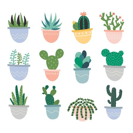 Collection of simple hand drawn illustrations of potted houseplants. Cute hand drawn clip arts, succulents, cactus, green flower plants, interior decorations.