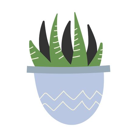 Simple vector  illustration of Haworthia succulent in pot. Potted green houseplant, interior decoration, isolated clip art  イラスト・ベクター素材