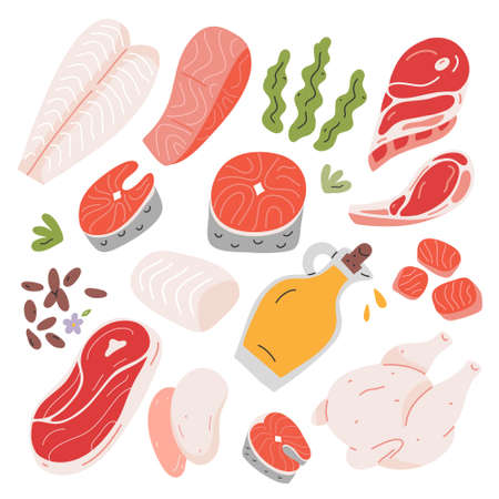 Cooking food ingredients, beef and lamb meat, salmon and white fish fillet ans steak, hand drawn vector illustration, isolated icons, flax seeds and vegetable oil  イラスト・ベクター素材