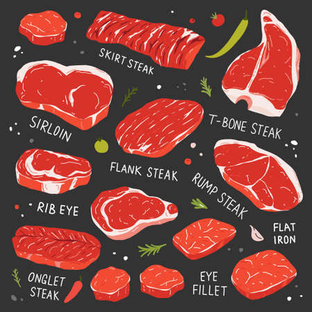 Steak collection, various types of beef steak, realistic illustration, t-bone, ribeye and tenderloin beef cuts, meat types for butcher shop or steakhouse, vector icon set isolated  イラスト・ベクター素材