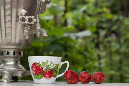 Russian samovar tea on the nature Stock Photo - 13886211